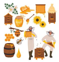beekeeping set flat healthy vector image