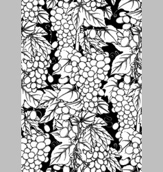graphic seamless pattern grapes bunches vector image