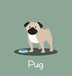 pug dog cartoon with dog bowl design vector image
