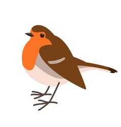 Robin bird flat vector