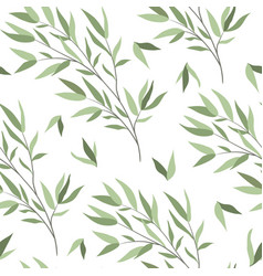 seamless pattern with branches a willow vector image