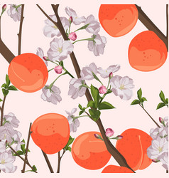 Seamless peach pattern with fruits leaves flower vector