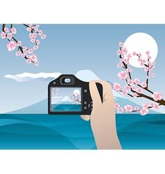 Travel photo sakura tree and fuziyama vector