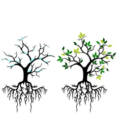 tree for you design vector image