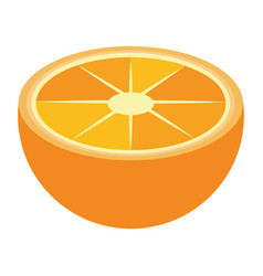 Orange half cut fruit isolated vector