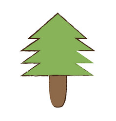 pine tree natural forest vector image