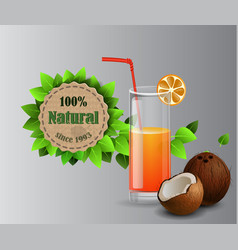 set of fruit juice splash in a glass vector image
