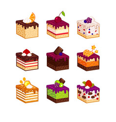 cake slices with flavour decor vector image