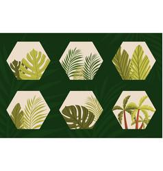Organic icons in hexagon vector