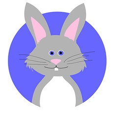 Cartoon of Cute Rabbit vector image vector image