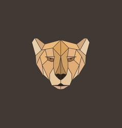 polygonal abstract geometric triangle cheetah vector image vector image
