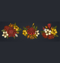 flower bouquet colored plumeria allamanda vector image