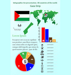 gaza strip infographics for presentation all vector image