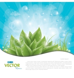 green leaves against blue sky vector image