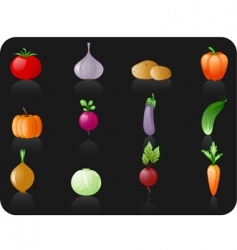 vegetables black background vector image