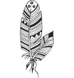 Two feather in ethnic style vector