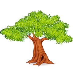 Cartoon of tree vector
