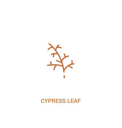 Cypress leaf concept 2 colored icon simple line vector