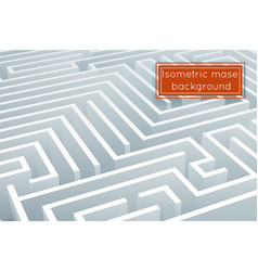 maze intricacy labyrinth isometric background 3d vector image