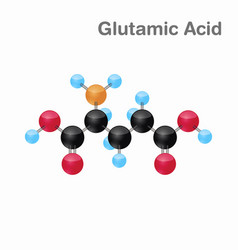 molecular omposition and structure of glutamic vector image