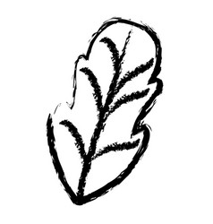 Monochrome blurred silhouette of leaf of beet vector