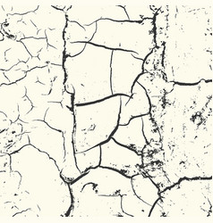 overlay grunge structure on white background vector image