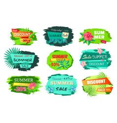 set color discount emblems off summer sale advert vector image