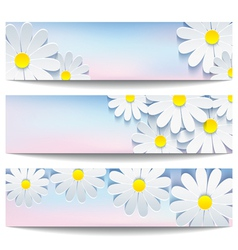 Set of banners with decorative flower chamomile vector