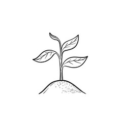 Sprout hand drawn sketch icon vector