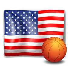 The american flag with a ball vector