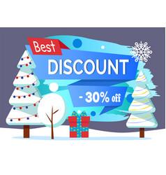 Best discount 30 percent off price winter sale vector