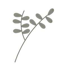 branch leaves foliage vegetation cartoon style vector image