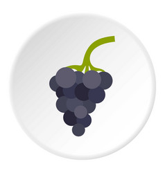 bunch of grapes icon circle vector image