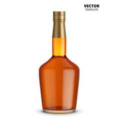 cognac whiskey or brandy bottle isolated vector image