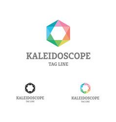 Kaleidoscope colorful logo vector