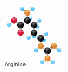 molecular omposition and structure of arginine vector image