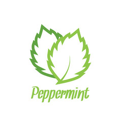 Peppermint logo design inspiration vector