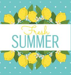 tropical citrus lemon fruits bright summer card vector image