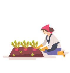Woman removes weeds from garden bed vector