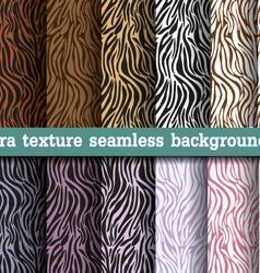 Animal print zebra texture seamless background vector image