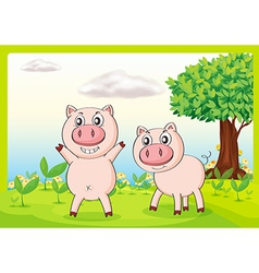 Smiling pigs vector image vector image