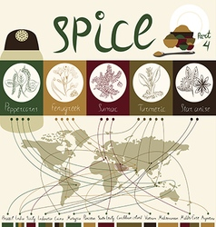 Spice of the world part4 vector