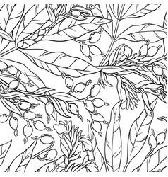 Cardamom seamless pattern vector