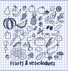 fruits and vegetables set hand drawn elements vector image