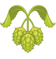 Hops visual graphic icon or logo for beer vector