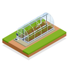 isometric modern smart industrial greenhouse vector image