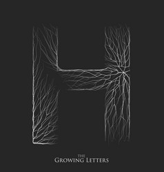 Letter h of branch or cracked alphabet h vector