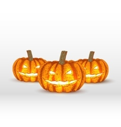 pumpkins on white background vector image