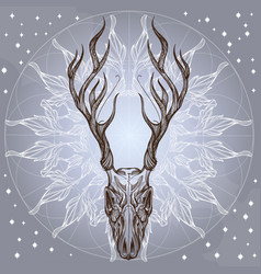 Sketch of deer skull with decorative floral vector