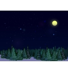 Starry Sky At Night vector image